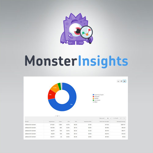 MonsterInsights - Ads Addon